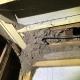 Concealed Termite Damage